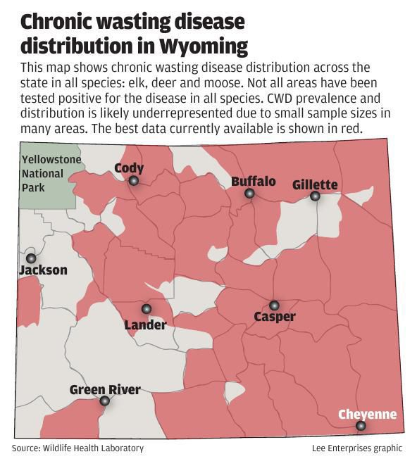 Elk and deer herds in jeopardy decades after chronic wasting disease