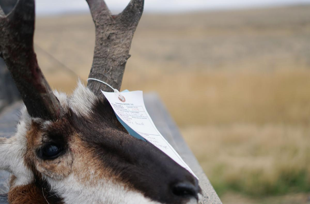 Thousands of hunters descend on an expanse of remote Wyoming