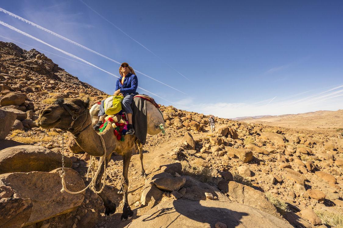 Mark Jenkins on camel