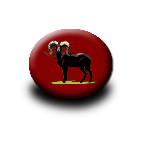 Big Horn button