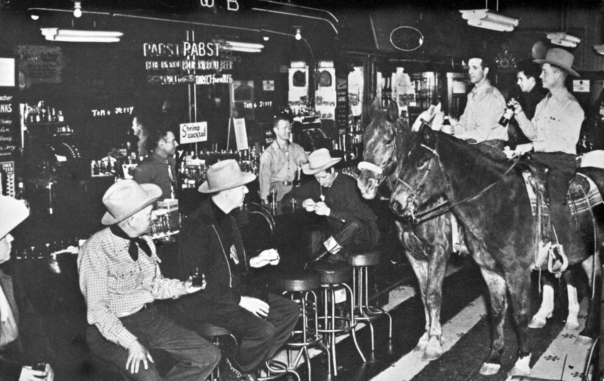 Wonder Bar horses