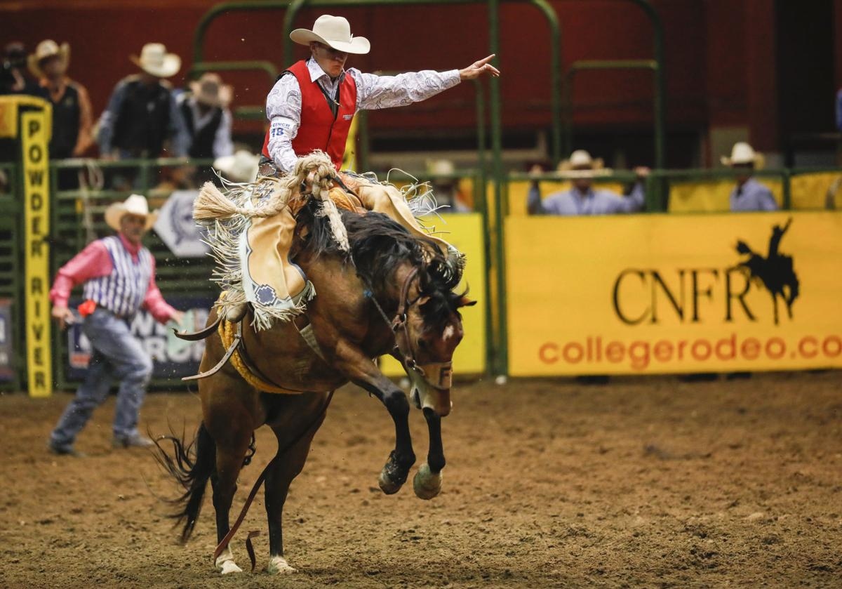 Bareback Rider Jesse Pope Fights Off Food Poisoning To Score Big At Cnfr Rodeo Trib Com