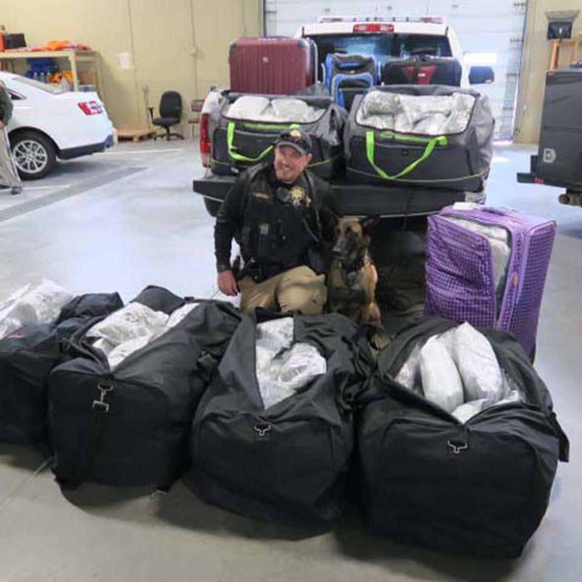 sweetwater county sheriff s office makes 300 pound pot bust cops courts trib com 300 pound pot bust