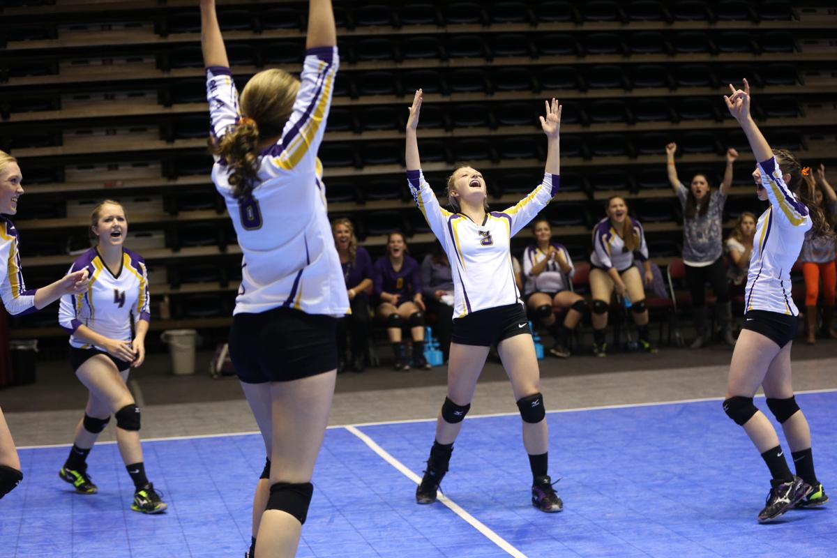 State Volleyball Finals - Snake River