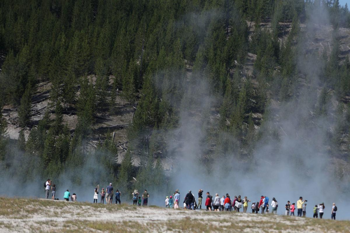 Yellowstone Grand Teton National Parks To Reopen On A Limited
