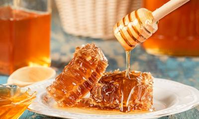 Everything you ever wanted to know about honey