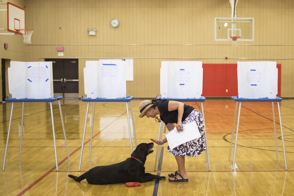 Wyoming Primary Elections
