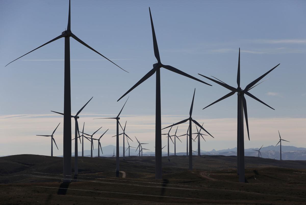 Wind Energy Eagles