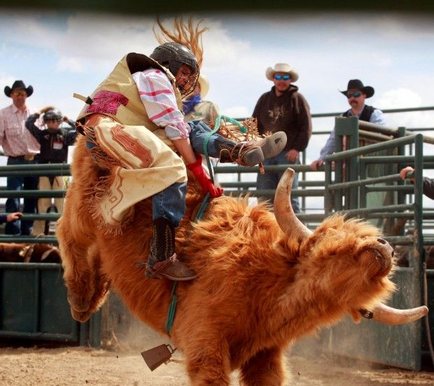 Young Riders Take Bulls By The Horns In Wyoming