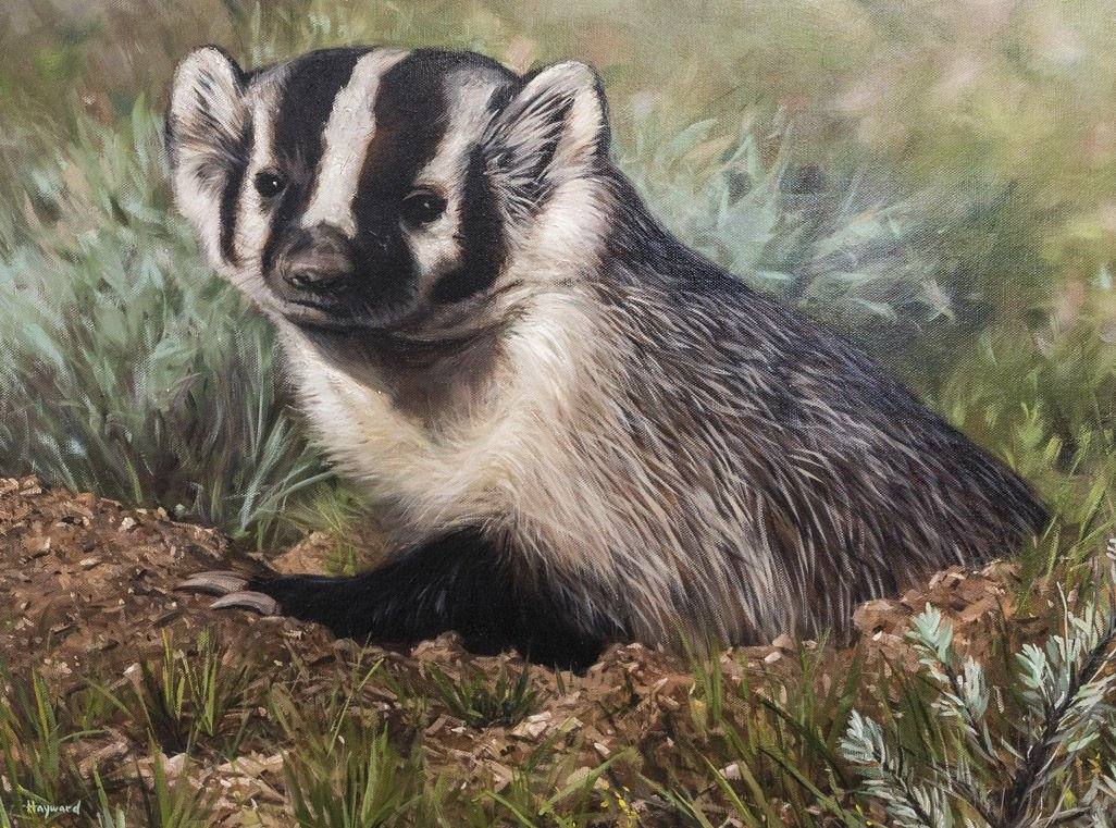 Wyoming Artist To Be Featured On 2018 Conservation Stamps
