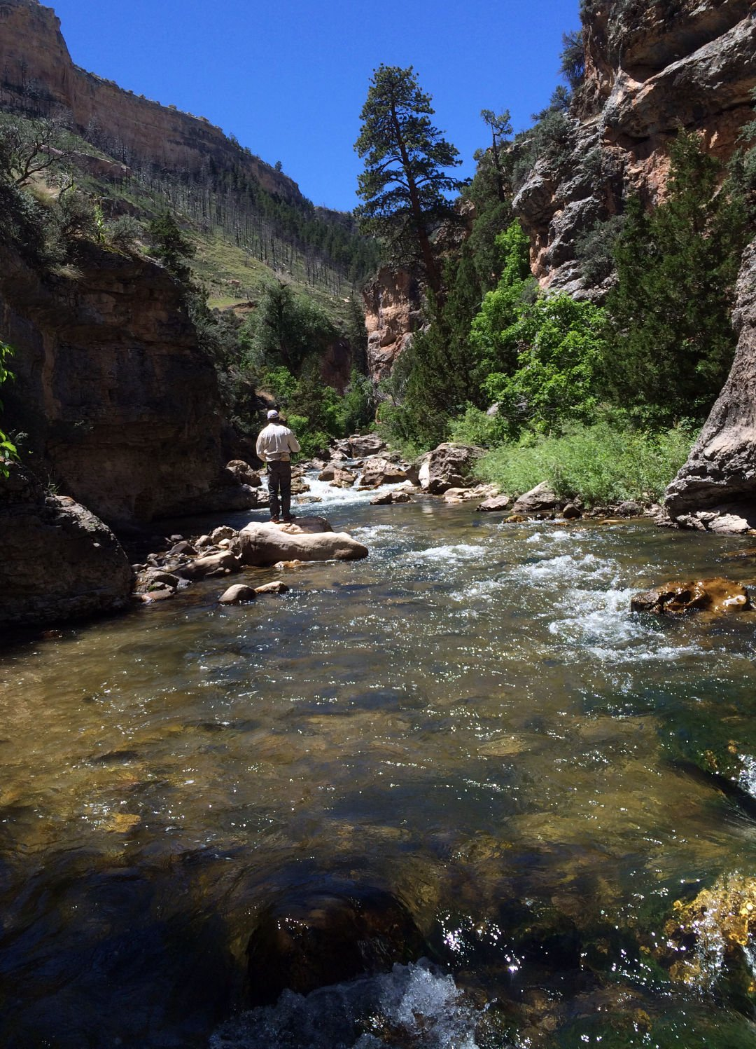Middle Fork of the Powder River