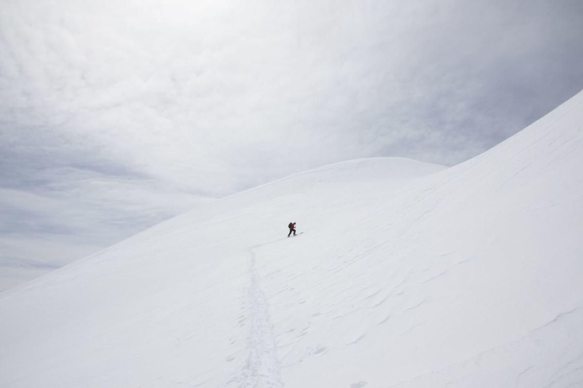 Lone tracks