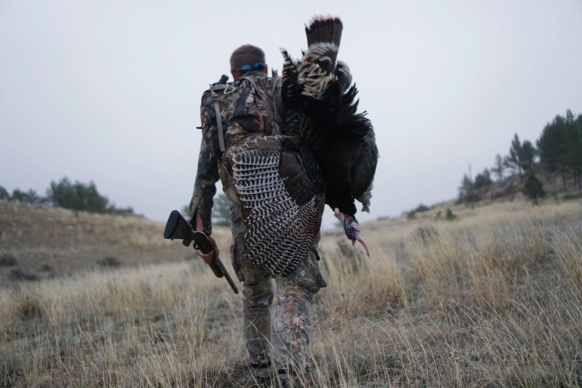 Turkey Hunting (copy)