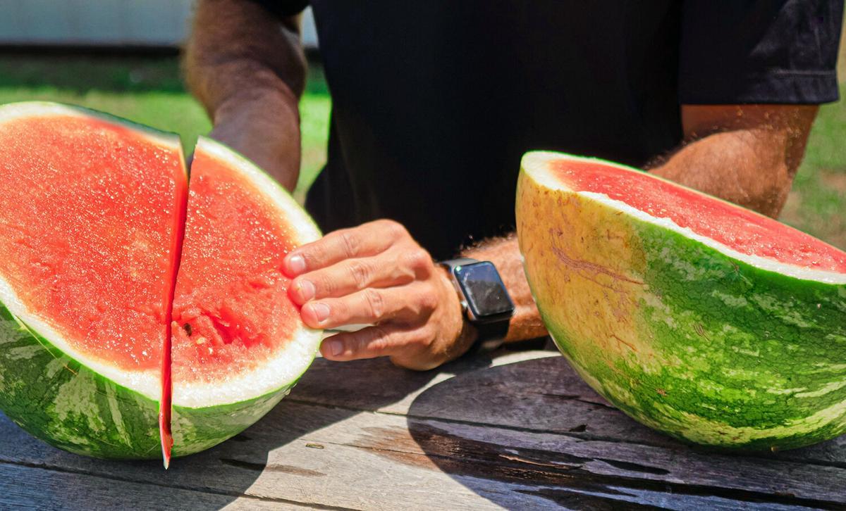 Mouzin watermelon 1