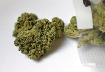 Wyoming Legislature kills bill for marijuana reform | 307