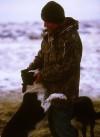 Winter Sheep 6