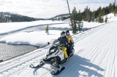 Buzzing through Yellowstone