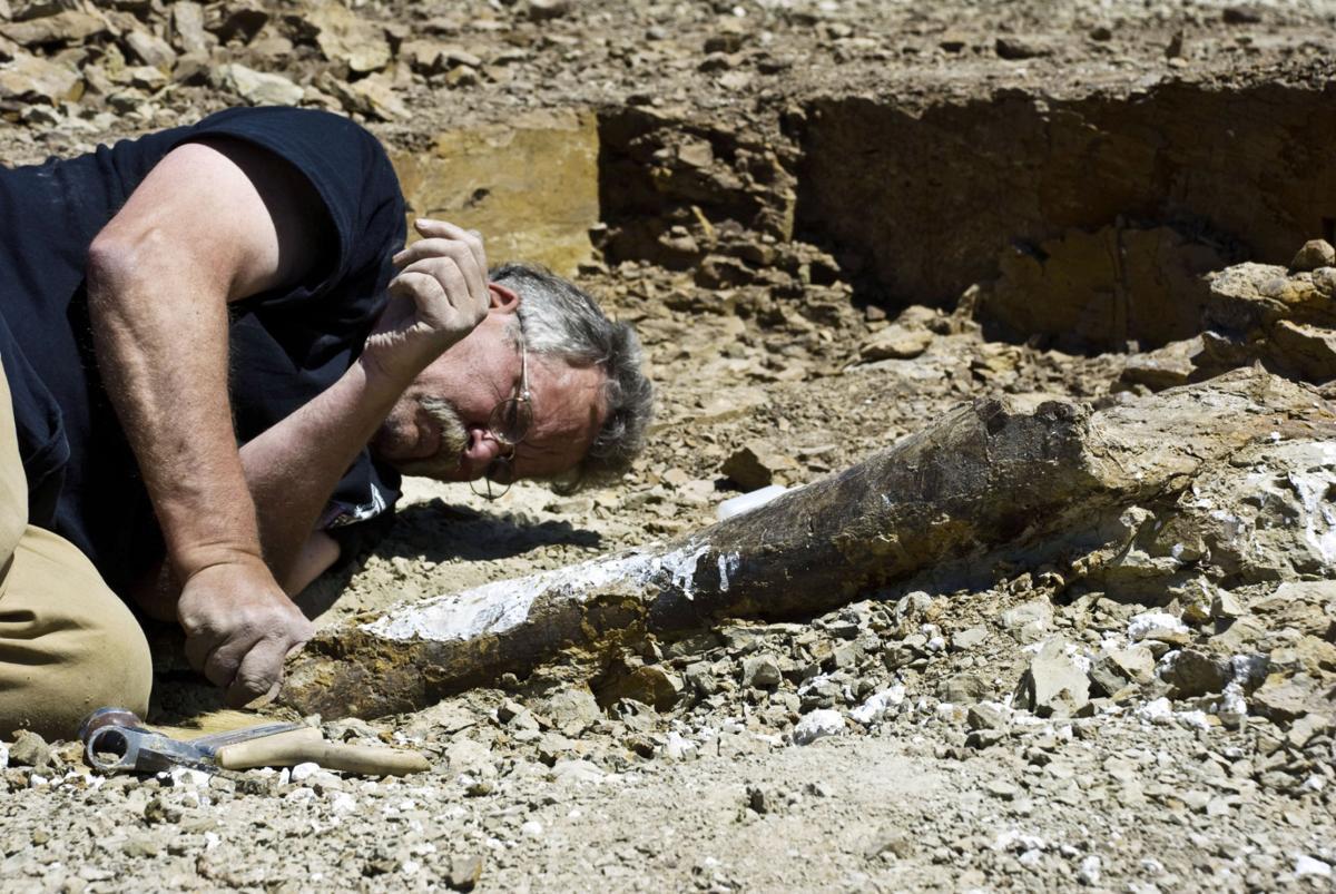 Documentary Paleontology Pardon