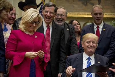 Liz Cheney, John Barrasso and Donald Trump