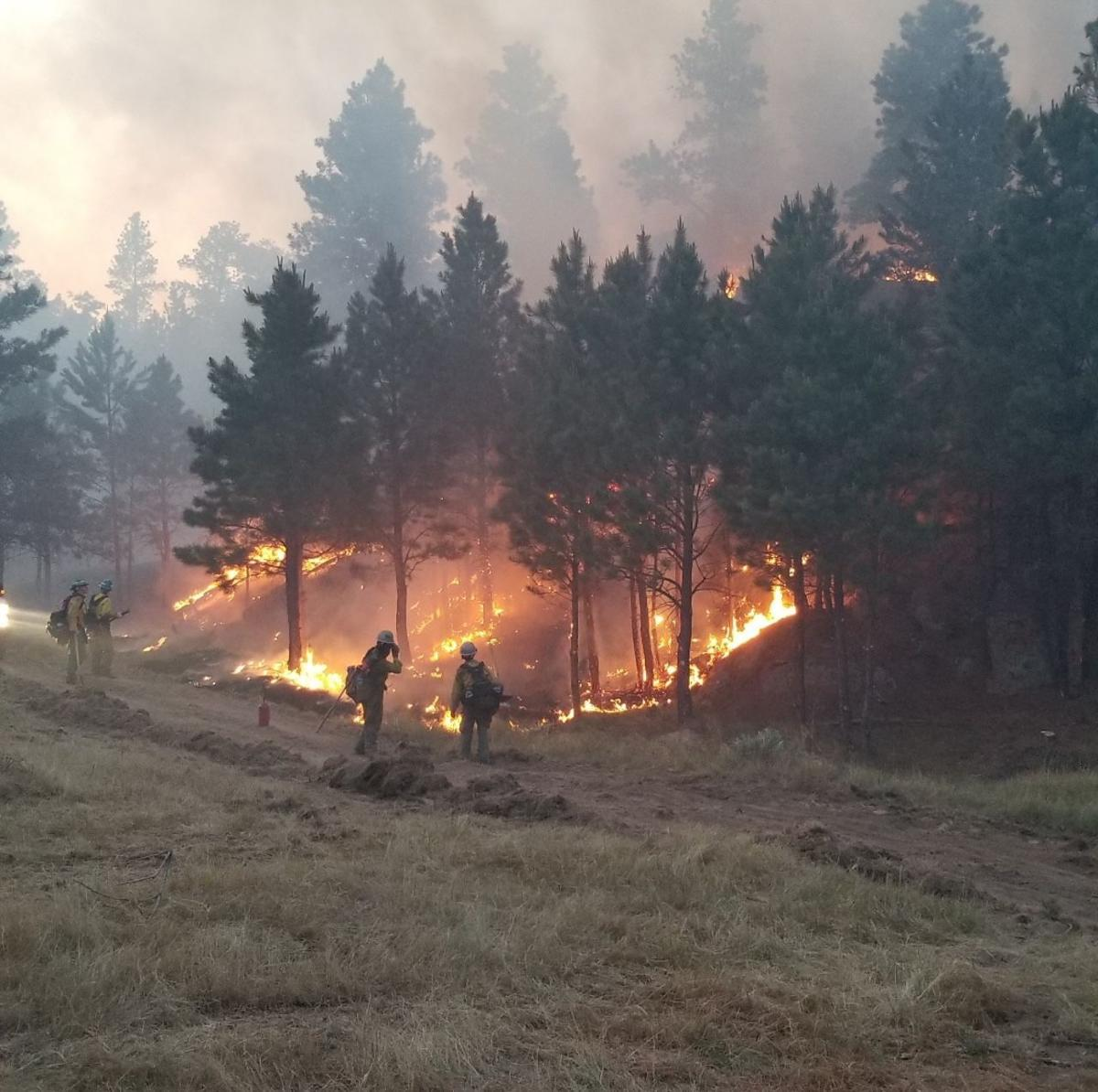 Pine Haven Fire