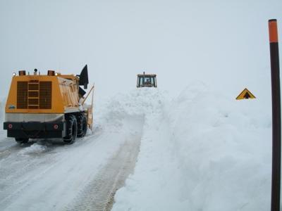 Burgess Plowing
