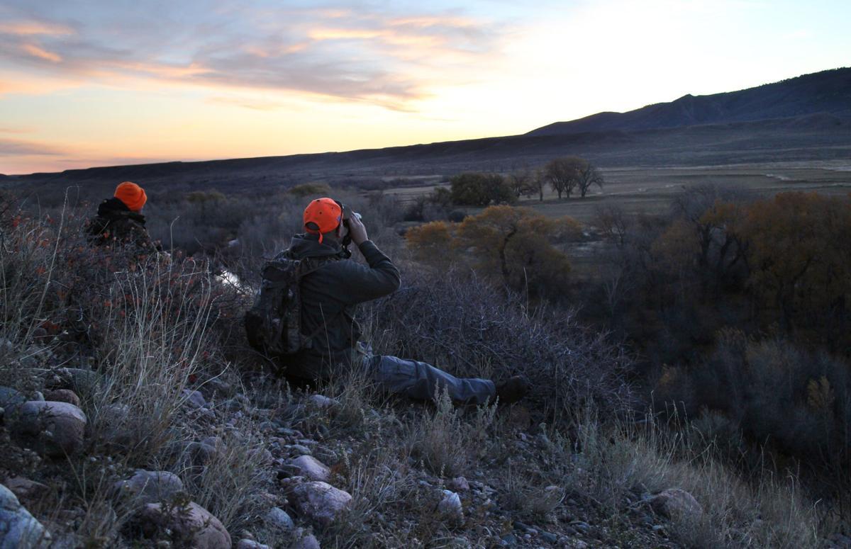 Hunting (copy)