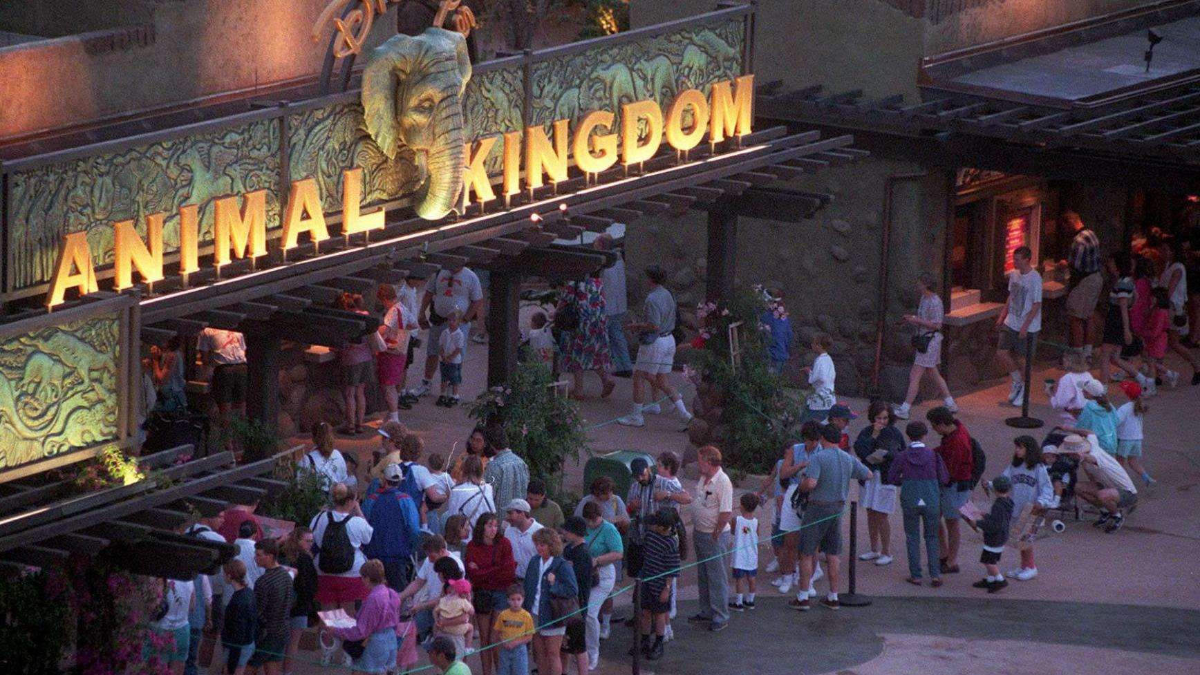 20 things about Disney's Animal Kingdom, which turns 20 on Earth Day