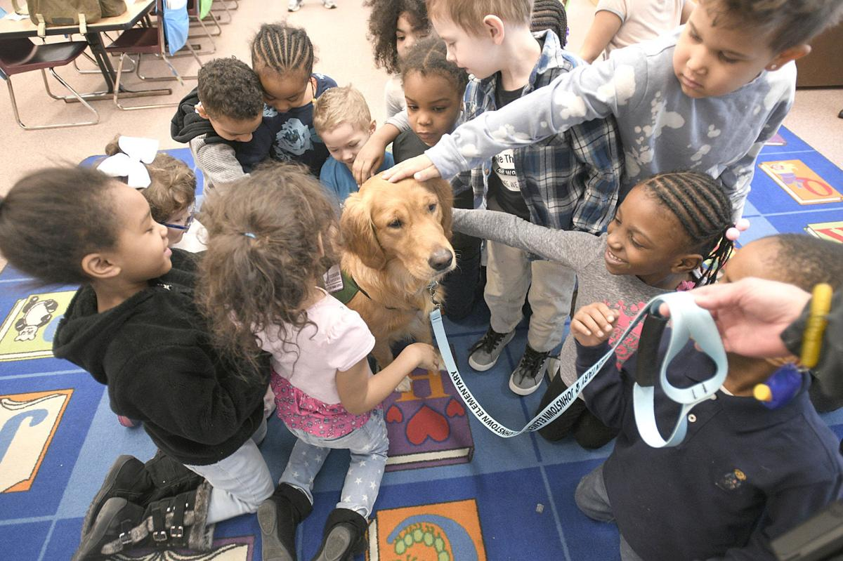WATCH VIDEO | Center of attention: Service dog making an impact at
