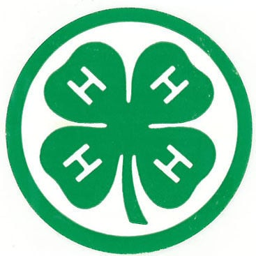 Image result for 4h logo