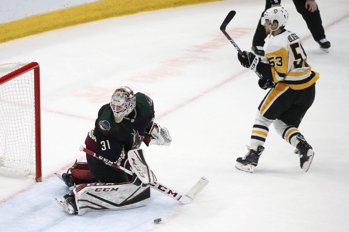 Penguins Coyotes Hockey