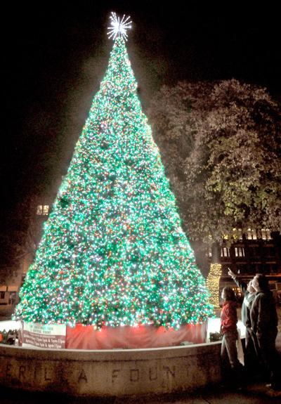 downtown christmas tree - How Long Can A Christmas Tree Last