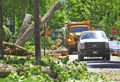 Storm Damage | Westmont | Emory Avenue