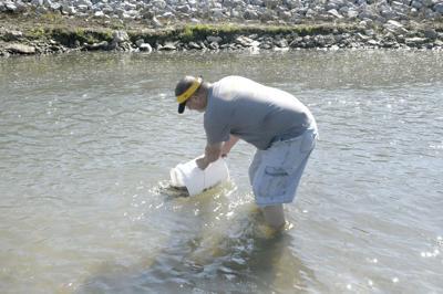 Jason Evans stocking trout