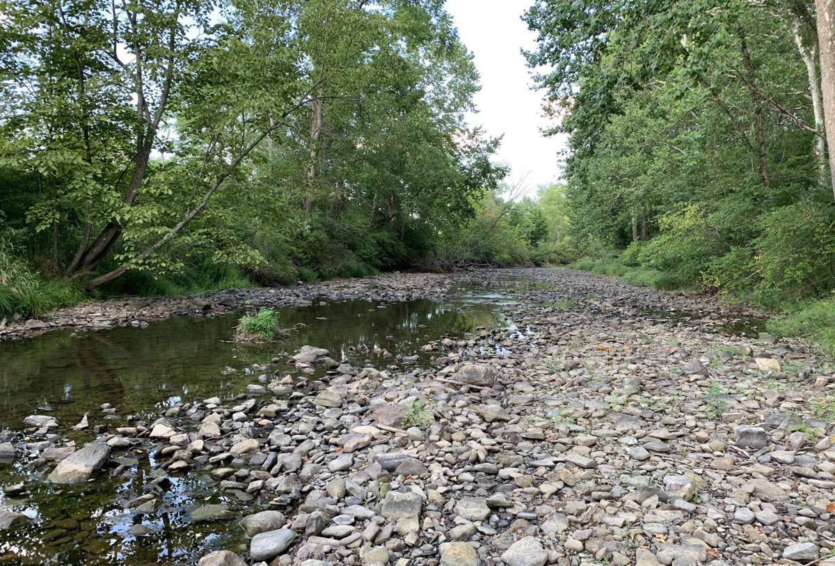 Low streams