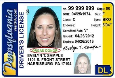pennsylvania drivers license out of state
