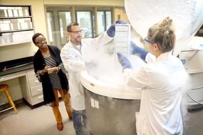 Windber tissue bank expanding in size and impact for medical research