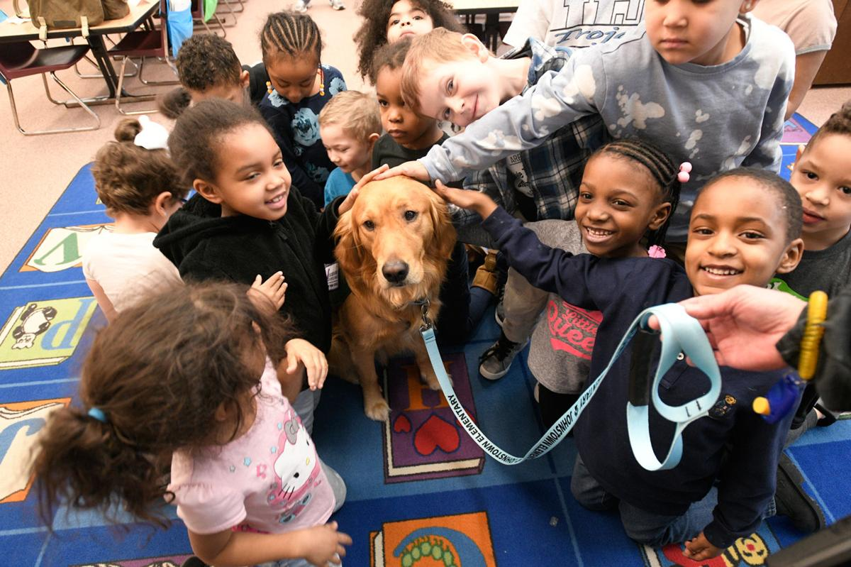 Johnstown Elementary School service dog