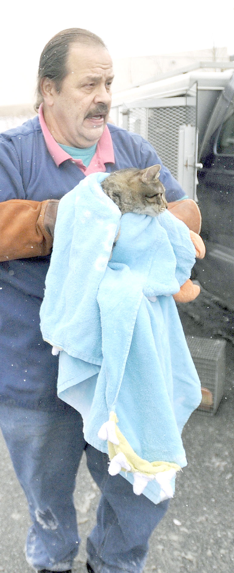 37 cats rescued from home in Johnstown