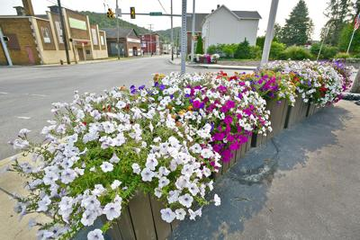 West End flowers