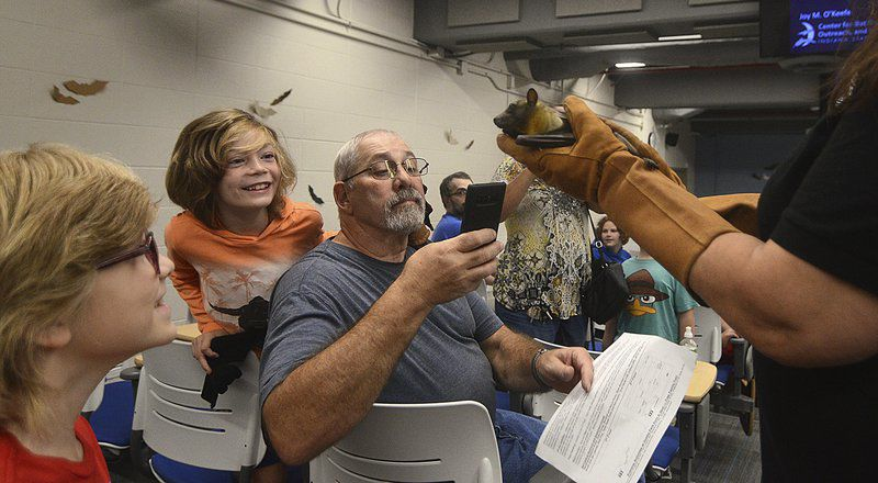 Bats get chance to sound off at festival