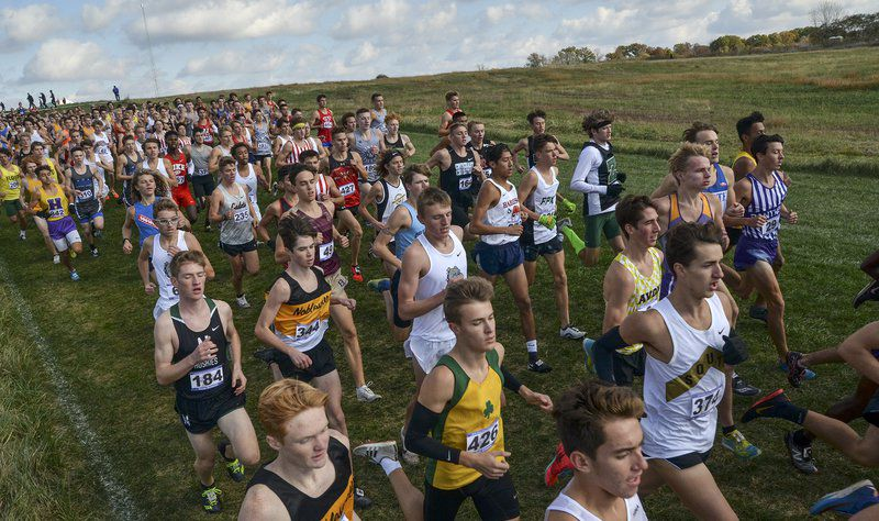 South's Light earns all-state honor Young Northview teams both place 24th at CC finals