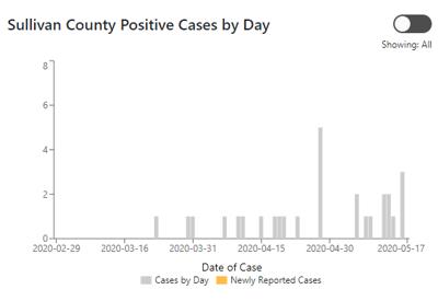 Sullivan County positive cases