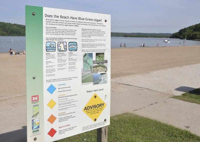 Indepth Harmful Blue Green Algae Creeps Into Indiana Lakes