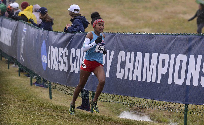 Cougar men, Razorback women have a day in the sun, win NCAA cross country titles