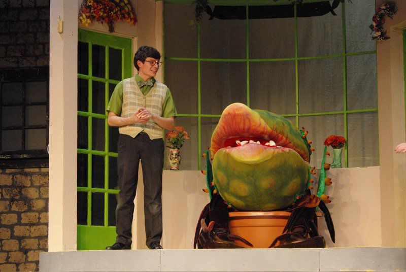 Community Theatre opens 92nd season with 'Little Shop of Horrors'