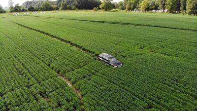 Man leads troopers on chase that ends in bean field