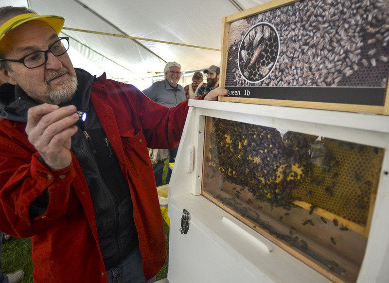 Wabash Valley residents have plenty of chances to participate in Earth Month