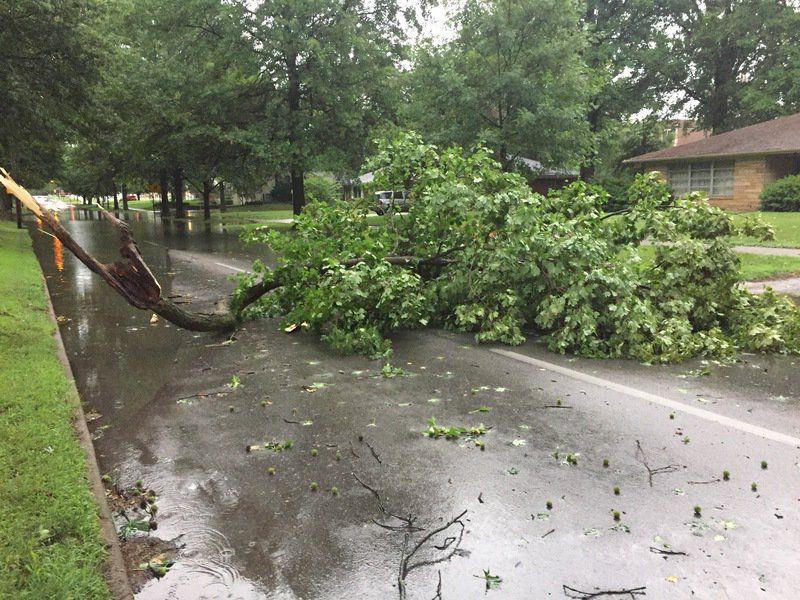 Stormy Weather Wreaks Havoc In Vigo County Again Local News