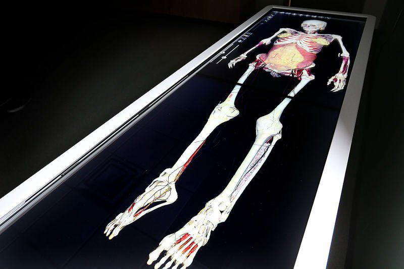 Digital cadavers\' add to Ivy Tech learning experience | Local News ...