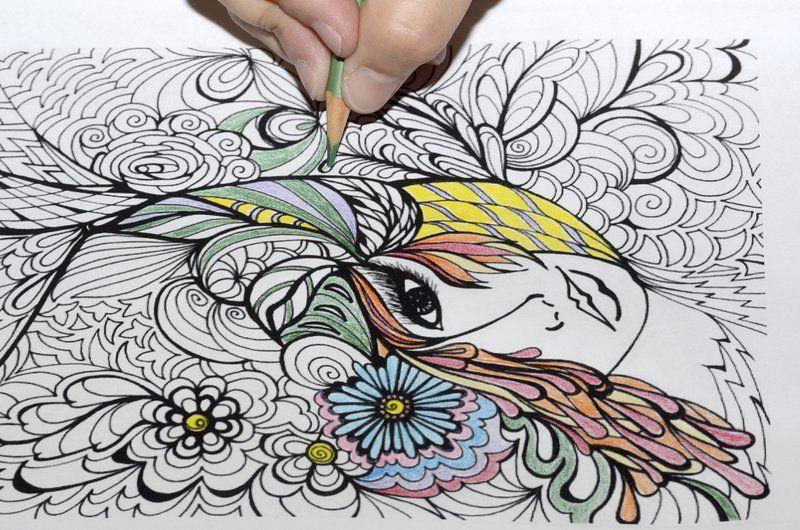 Colorful Life Adult Coloring Growing As Fun Destressing Pastime